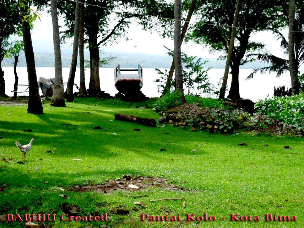 Koleksi Foto >> Komunitas Babuju, Bima Istitute, dan Sahabat FB Mbojo ...