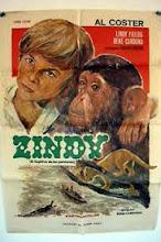 Zindy, el fugitivo de los pantanos (1973)