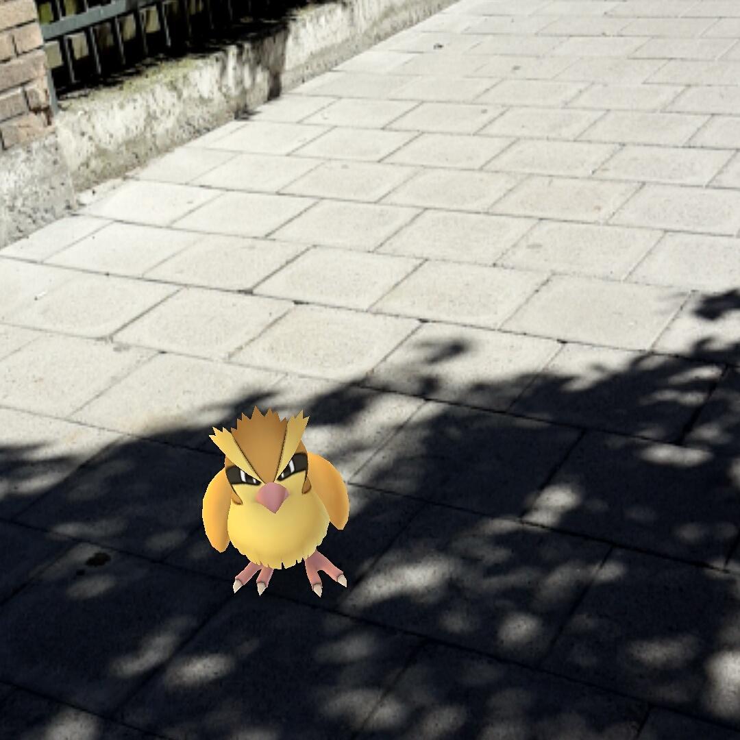 Pokémon :D)