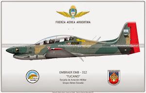 Aviación en Detalle