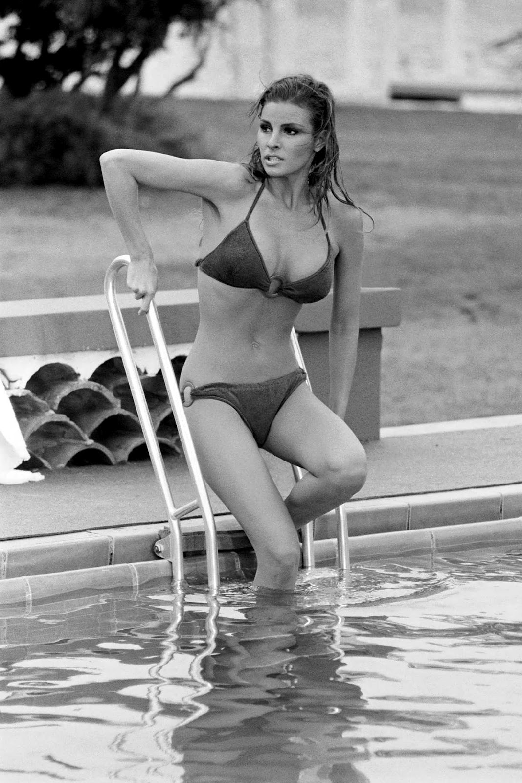 A Slice Of Cheesecake Raquel Welch Poolside