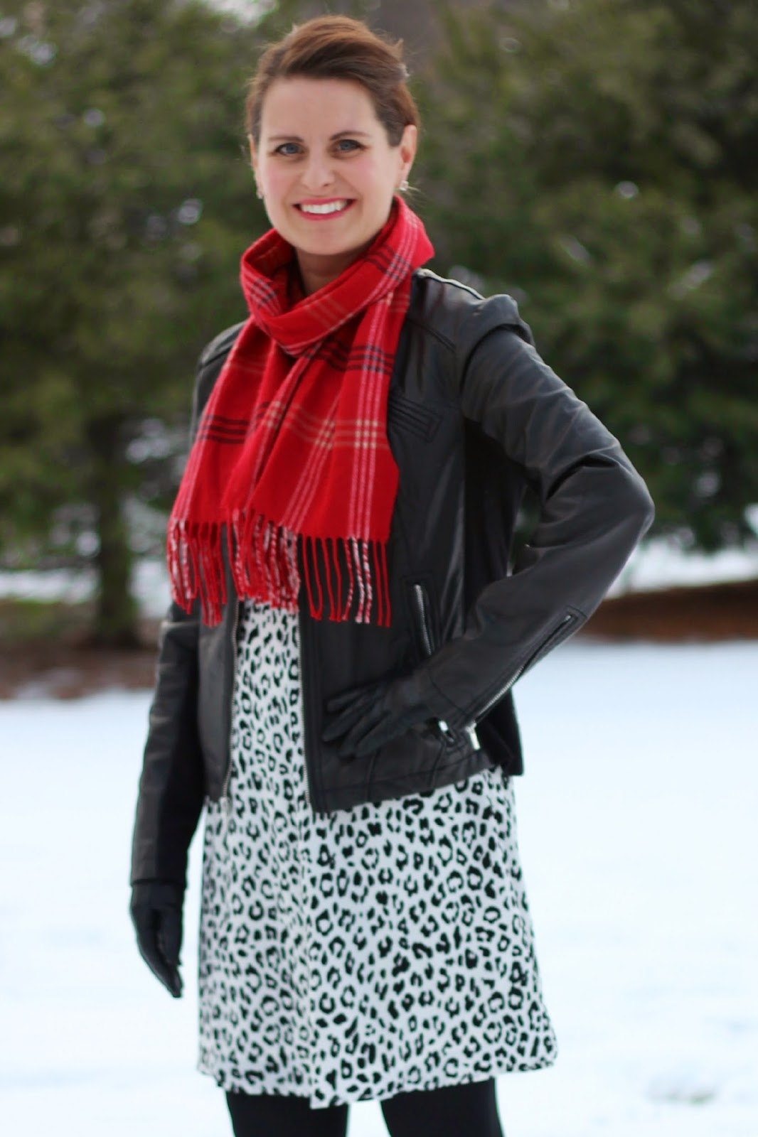 Snow leopard dress, red plaid scarf, black (minus the) leather jacket, Ann Taylor booties, winter date night ouffit, winter look
