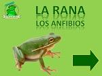 Proyecto LA RANA