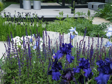 Ulf Nordfjells Garden at London Chelsea Flower Show 2009