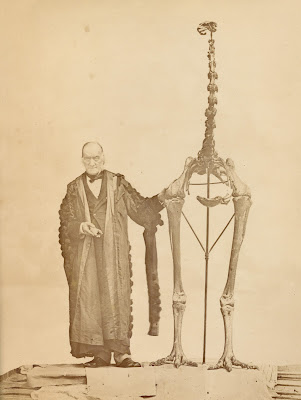 Sir Richard Owen with skeleton of Dinornis. Credit: (c) Zoological Society of London