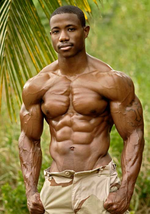 Colors of Bollywood and Hollywood Bodybuilders Actors and