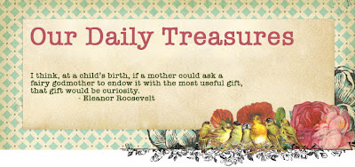Our Daily Treasures
