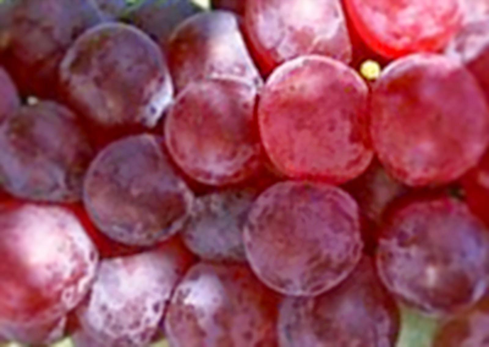 10 Manfaat Menakjubkan Buah Anggur untuk Kesehatan Anda