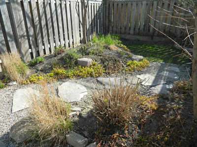 Coxwell Danforth backyard garden renovation before Paul Jung Gardening Services Toronto