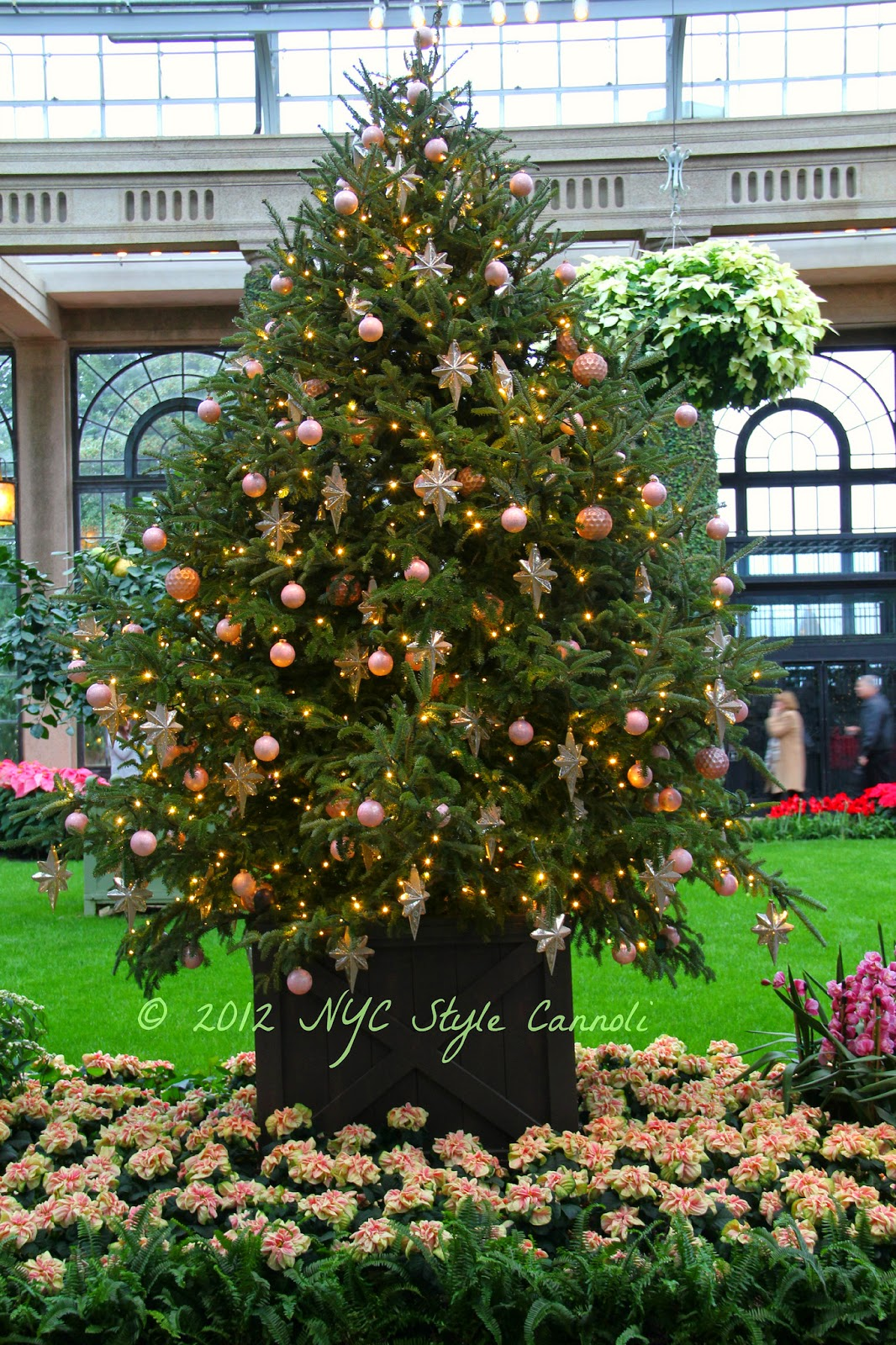 A Trip to Longwood Gardens at Christmas   NYC, Style & a little Cannoli