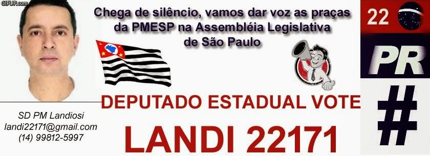Eleições 2014 para deputado estadual por São Paulo vote Landi 22171