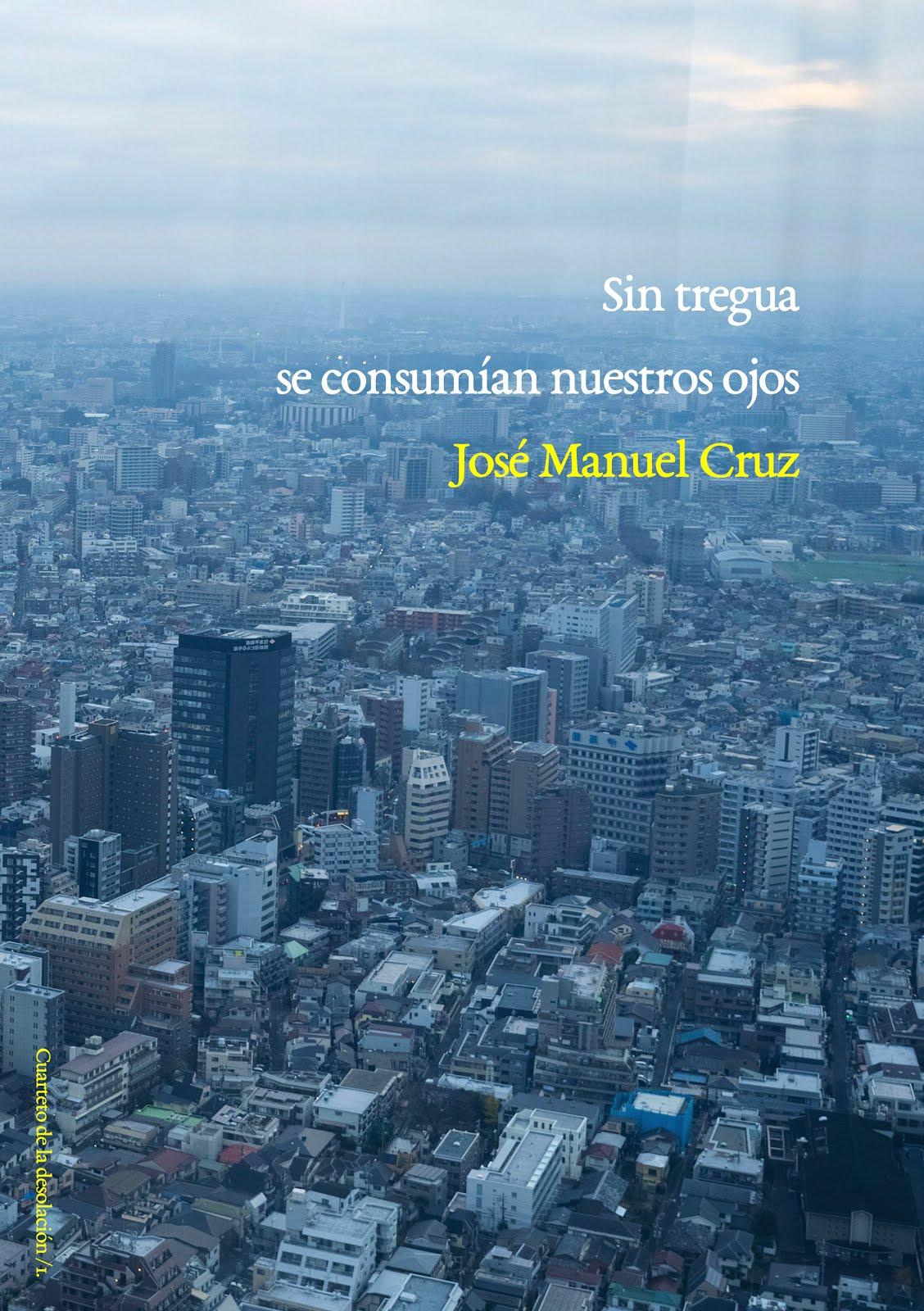 """Portada de mi novela """"Sin tregua se consumían nuestros ojos"""" (2013)"""
