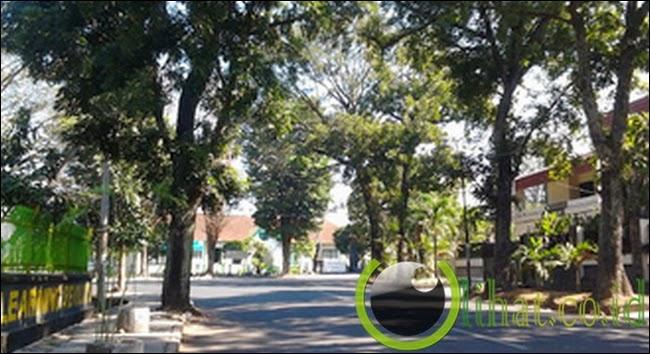 Jl.Pajajaran - Malang