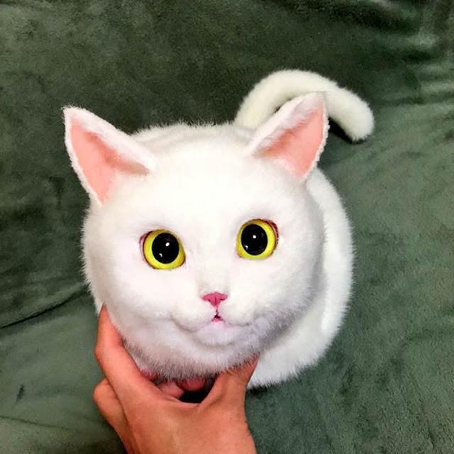 Cat Bags - Conheça algumas bolsas incríveis em forma realistas de belos gatos
