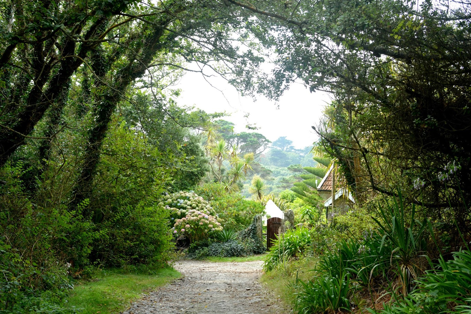 Path to Tresco Abbey Gardens from Old Grimsby