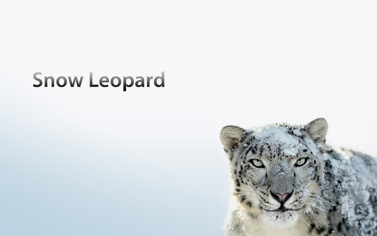 wallpapers hd for mac. Snow Leopard Wallpaper Hd.