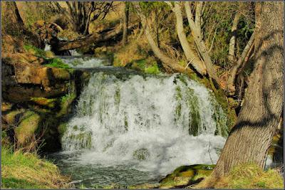 Salto De La Herrería (Río Laguna, Campillos-Sierra)