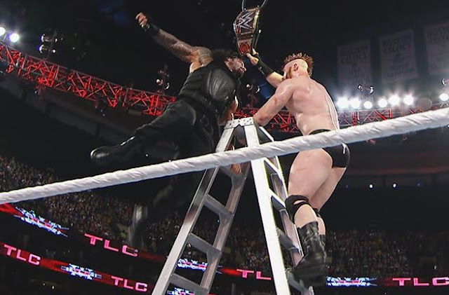WWE, TLC, 2015, WWETLC, Tables Ladders and Chairs, Wrestling, TLC 2015, Matches, Results, Photos, Images, Roman Reigns,