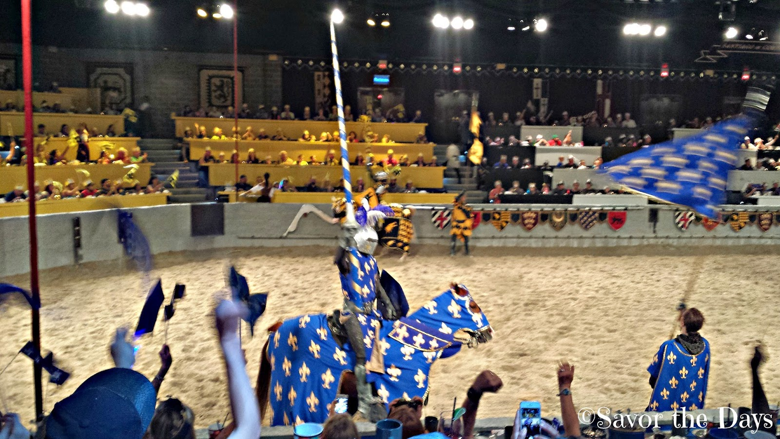 Blue Knight at Medieval Times