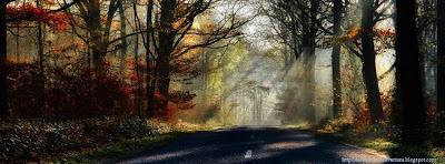 Couverture journal facebook forêt