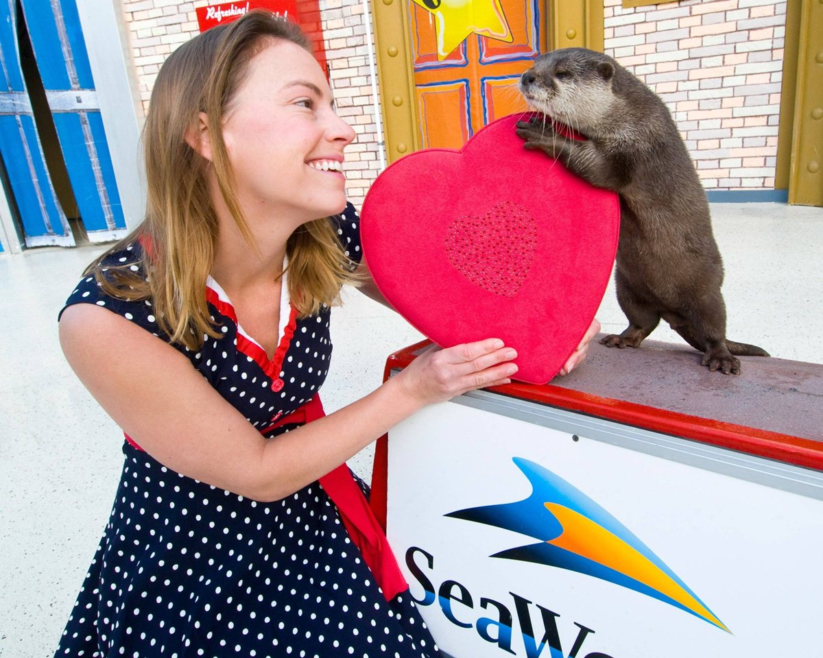funny animal pictures, otter gives heart to woman