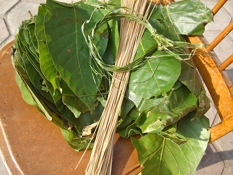 Display of items used in making leaf plates - the thin bamboo sticks in a bundle fresh leaves and green ropes (sinka paat doori). & Taste of Nepal: Leaf Plates of Nepal (Tapari Duna Bota)