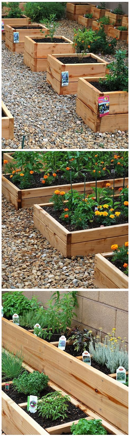 Ideas Mini Raised Beds