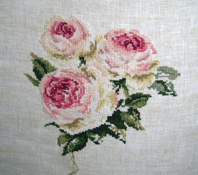 """Rose """"Pierre de Ronsard"""""""