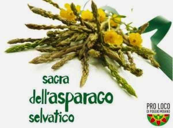 9° sagra dell'asparago selvatico poggio moiano (rm) 10-11/05/14
