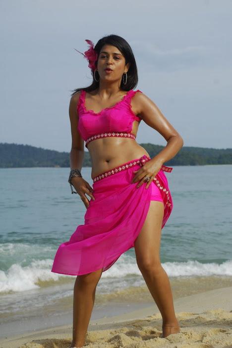 shraddha das spicy new from mugguru, shraddha das actress pics