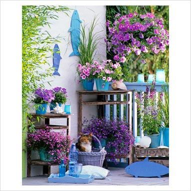 Azul vital decoraci n de jardines peque os for Macetas para jardines pequenos