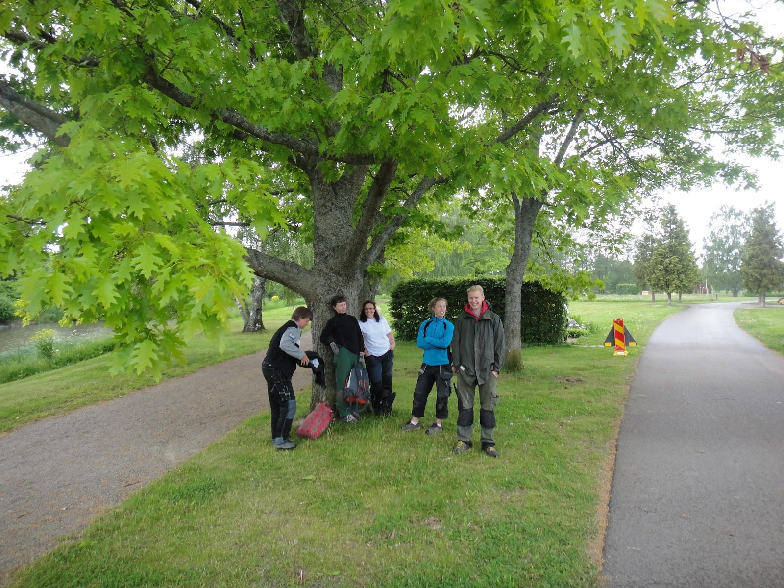 Enköpings idéträdgårdar 2012: bilder från femte anläggningsdagen