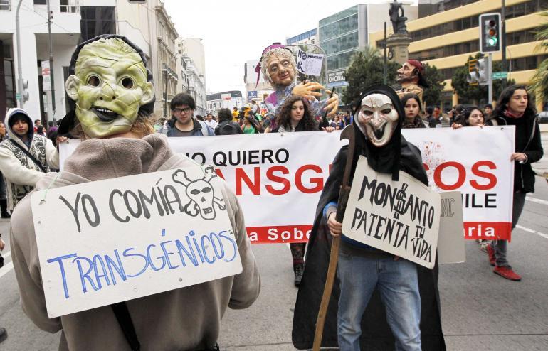η Monsanto συμβάλλει ελάχιστα στο να τραφεί ο κόσμος