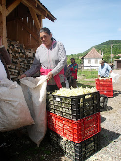 Transylvanian Food Company 6