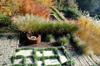 libro jardineria acer palmatum:
