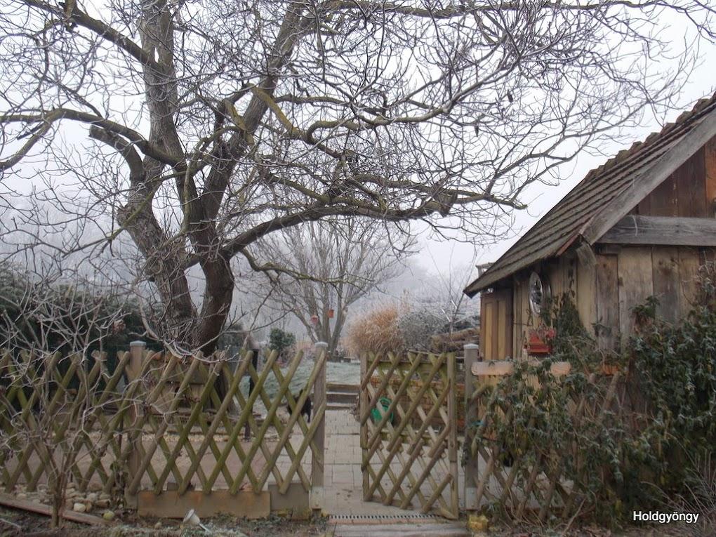 Álmaim-házunk