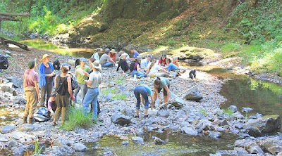 Salmon Institute lesson on water quality in San Geronimo Creek