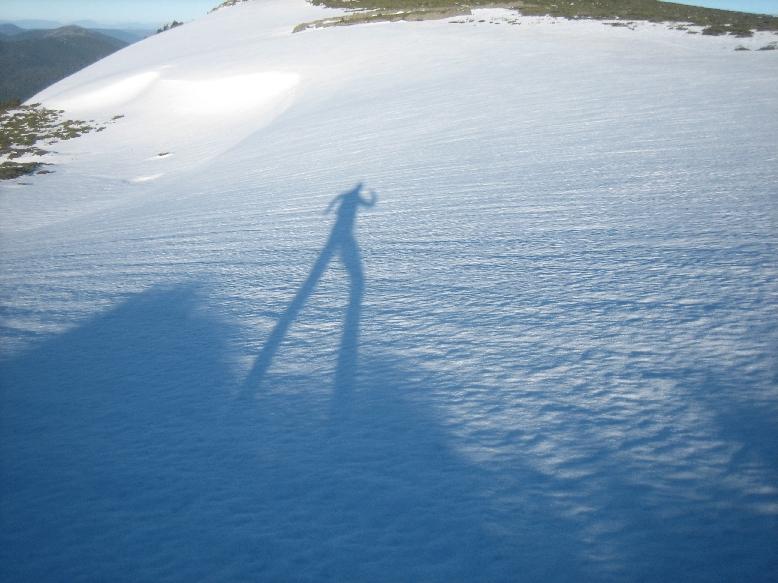 Sombras en la nieve