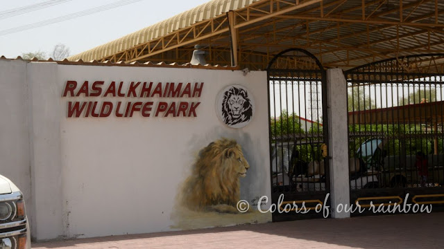 Ras Al Khaimah (UAE): Unconventioal and fun places to visit @https://colorsofourrainbow.blogspot.com/