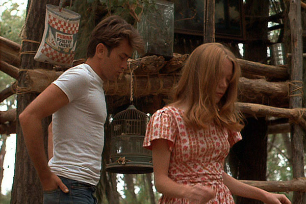 ... the movie! from 1973, starring martin sheen and sissy spacek. a true ...