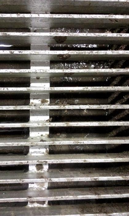 Stinking drain