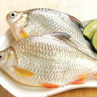 Mẹo giữ cá tươi, chế biến cá ngon