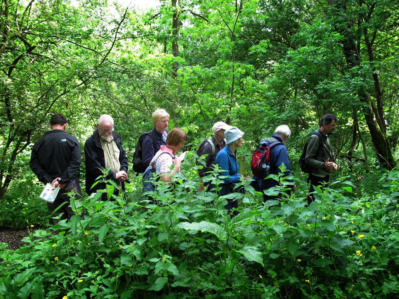 Robin Payne Facebook Robin Payne Leads Botanists