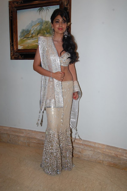 Shriya Saran sexy actress in saree