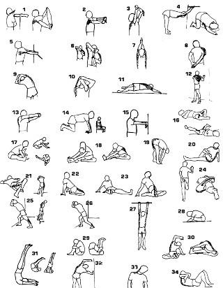 El stretching