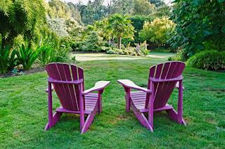 imatge d'un jardí amb gespa relaxant