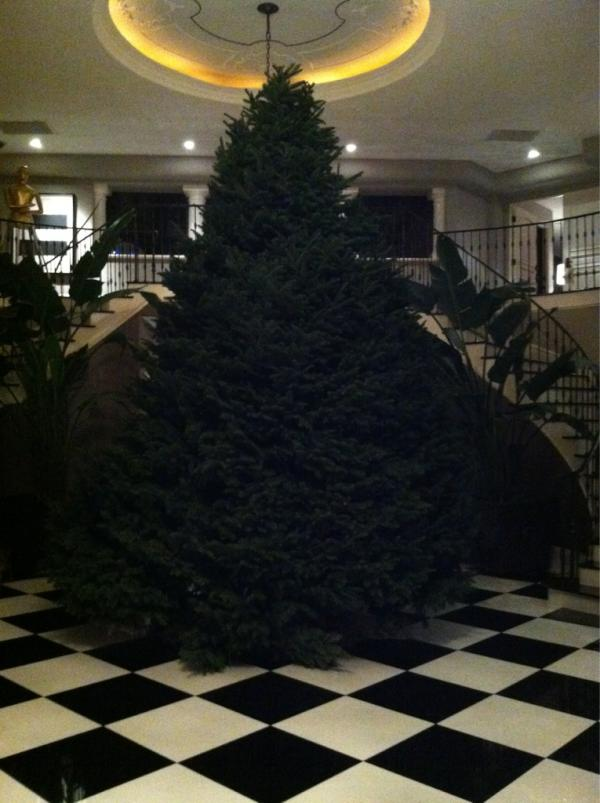 LoveKendallUK: Kardashian Christmas tree.