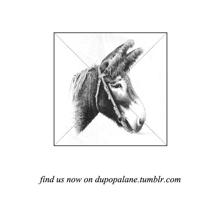 http://dupopalane.tumblr.com/