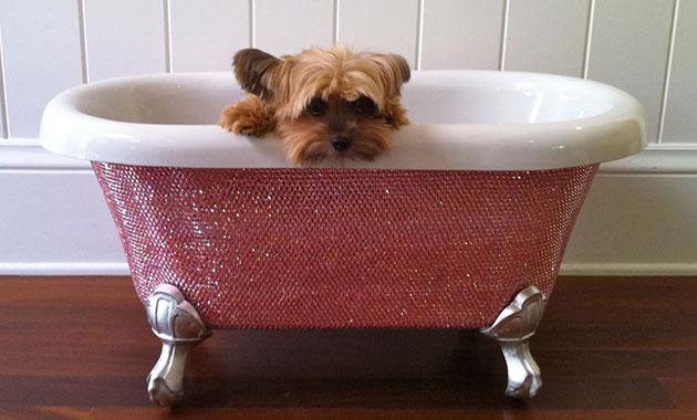 Vasca Da Bagno Rosa : Vasche da bagno di lusso vita da cani