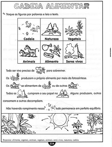 Suficiente CADEIA ALIMENTAR - 30 EXERCÍCIOS ATIVIDADES DESENHOS COLORIR  ES88
